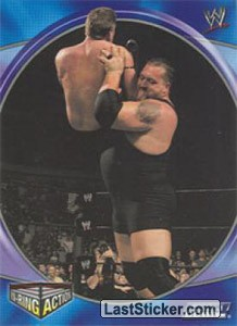 Big Show (IN RING ACTION)