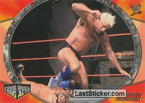 Ric Flair (IN RING ACTION)