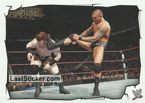 Sheamus vs Randy Orton (Royal Rumble)