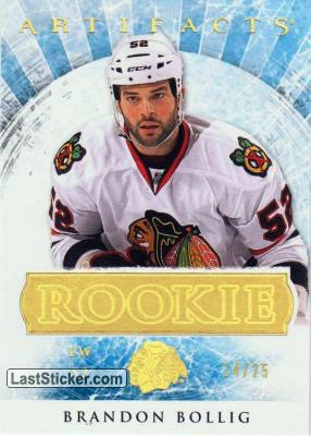 Brandon Bollig (Chicago Blackhawks)