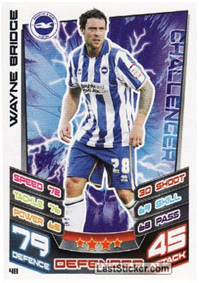 Wayne Bridge (Brighton And Hove Albion)