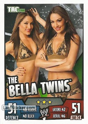 The Bella Twins (Tag Team)