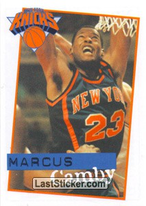 Marcus Camby (New York Knicks)