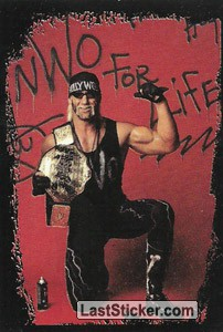 Hollywood Hogan (Wrestlers)