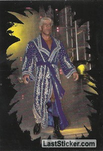 Ric Flair (Horsemen)