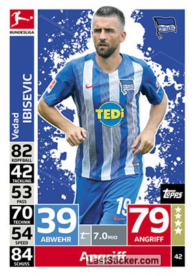 Vedad Ibisevic (Hertha BSC)