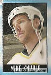 Mike Knuble (Boston Bruins)