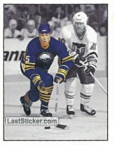 Buffalo Sabres - Action moment (Buffalo Sabres)